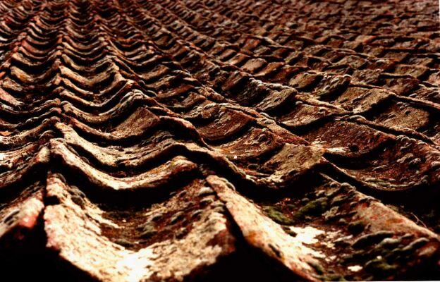 restauracion tejado
