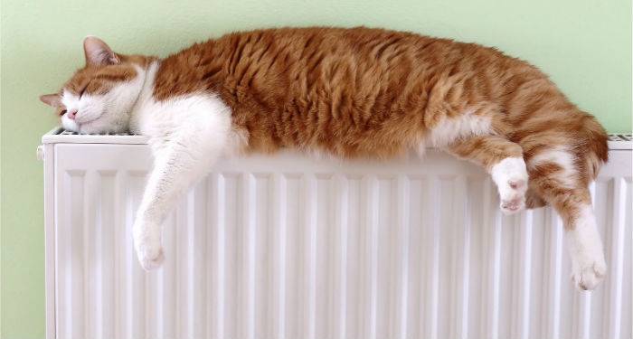 Instalación calefaccion